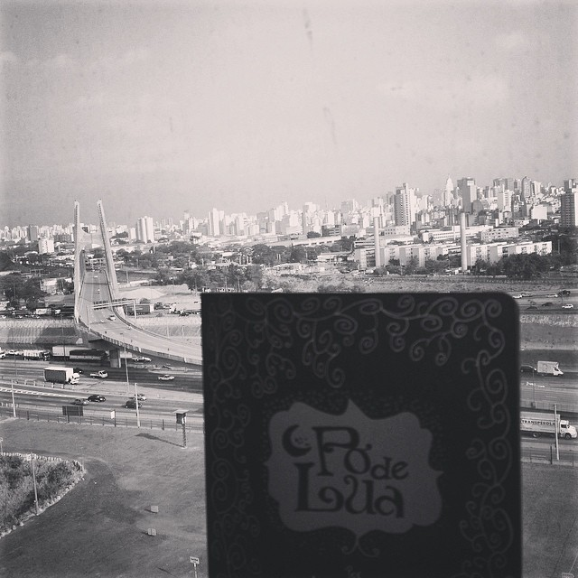 Coluna 8 - As raízes móveis e a Bienal do Livro de São Paulo