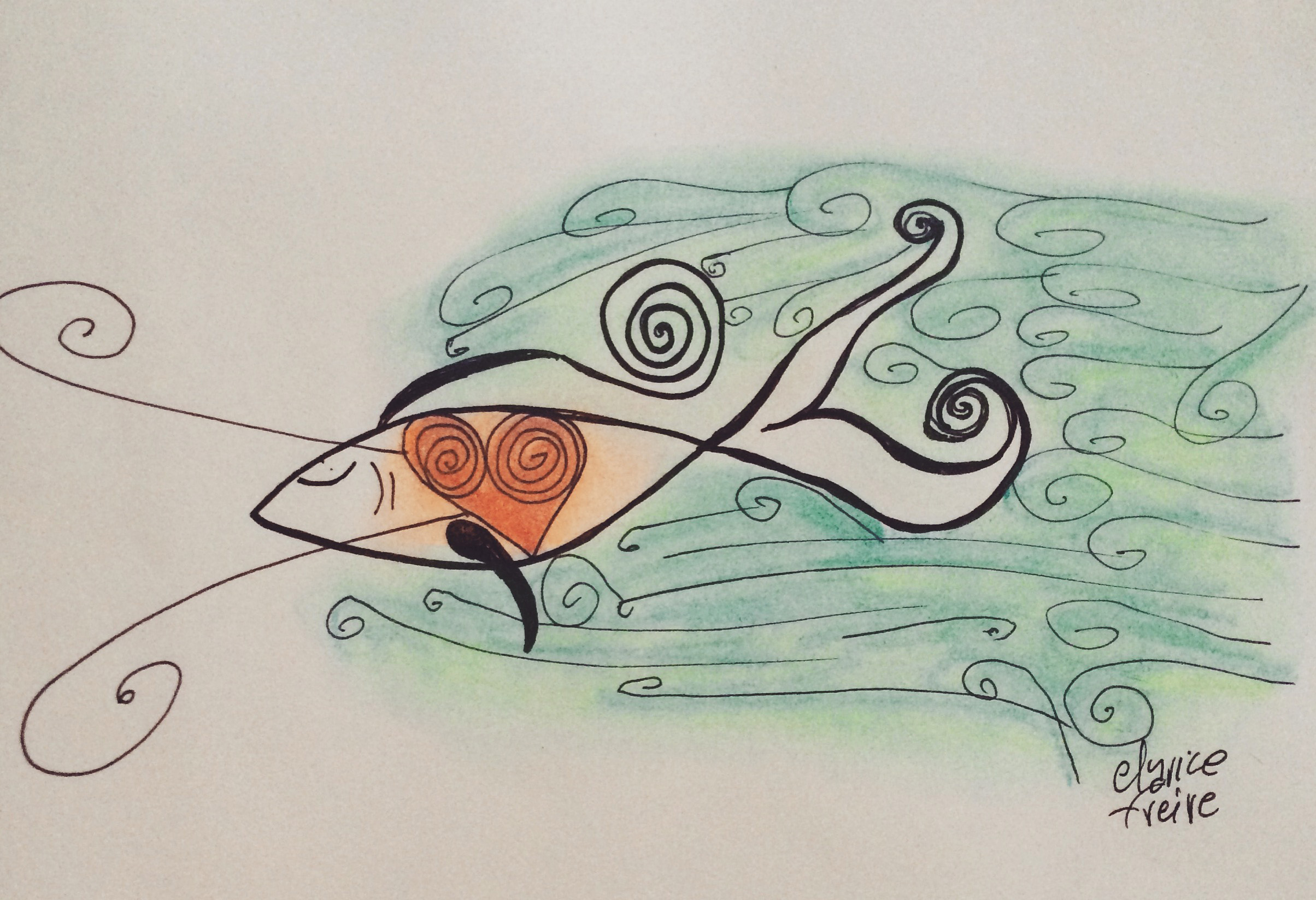 02.04 - peixeclarice