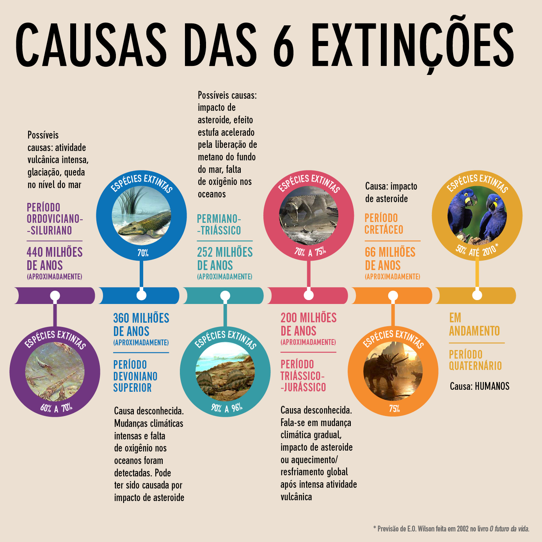 infografico_SextaExtincao_2