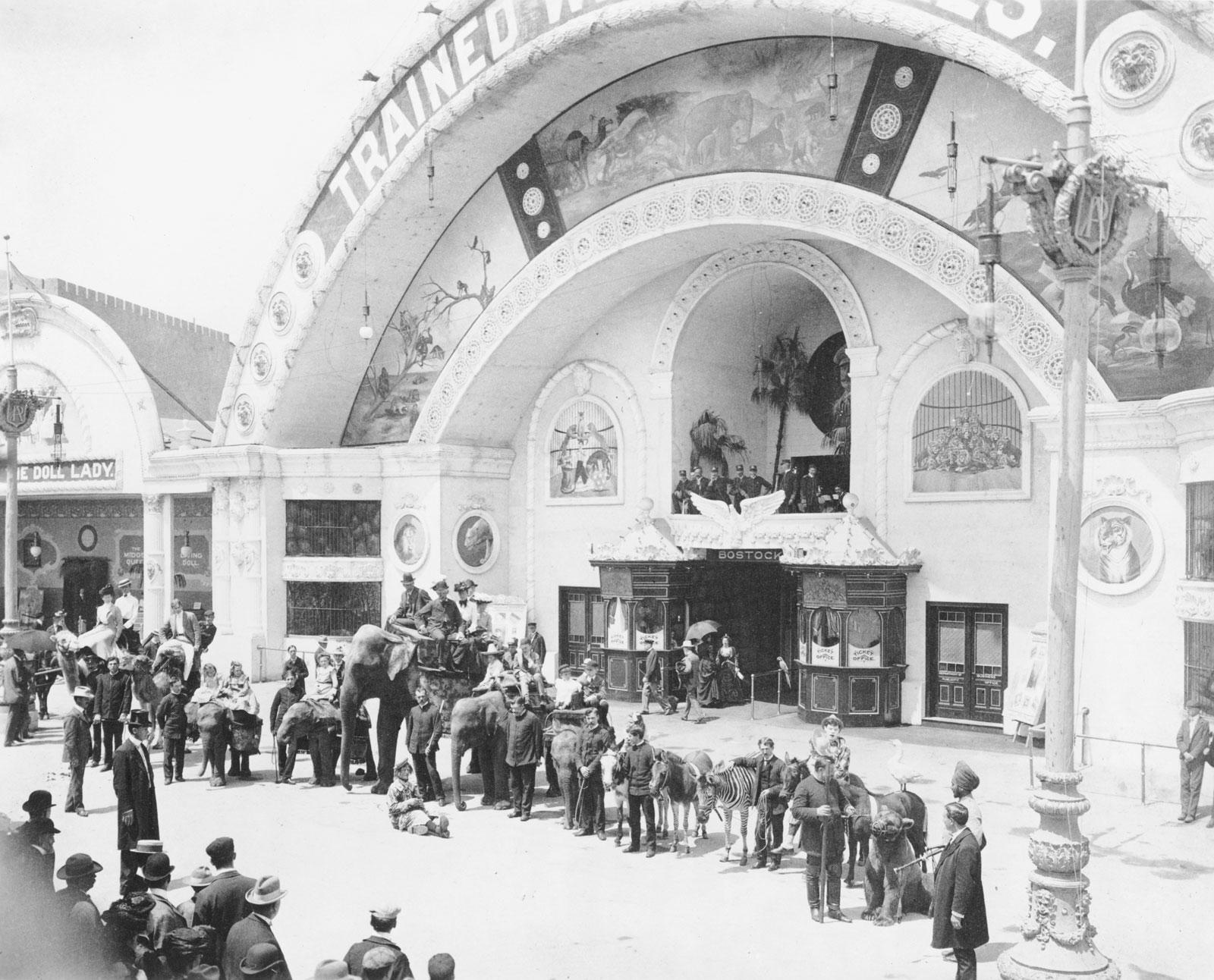 exibição de Circo