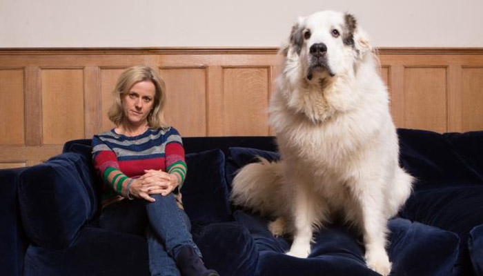 Como um cão adotado de 58 quilos mudou minha vida, por Jojo Moyes